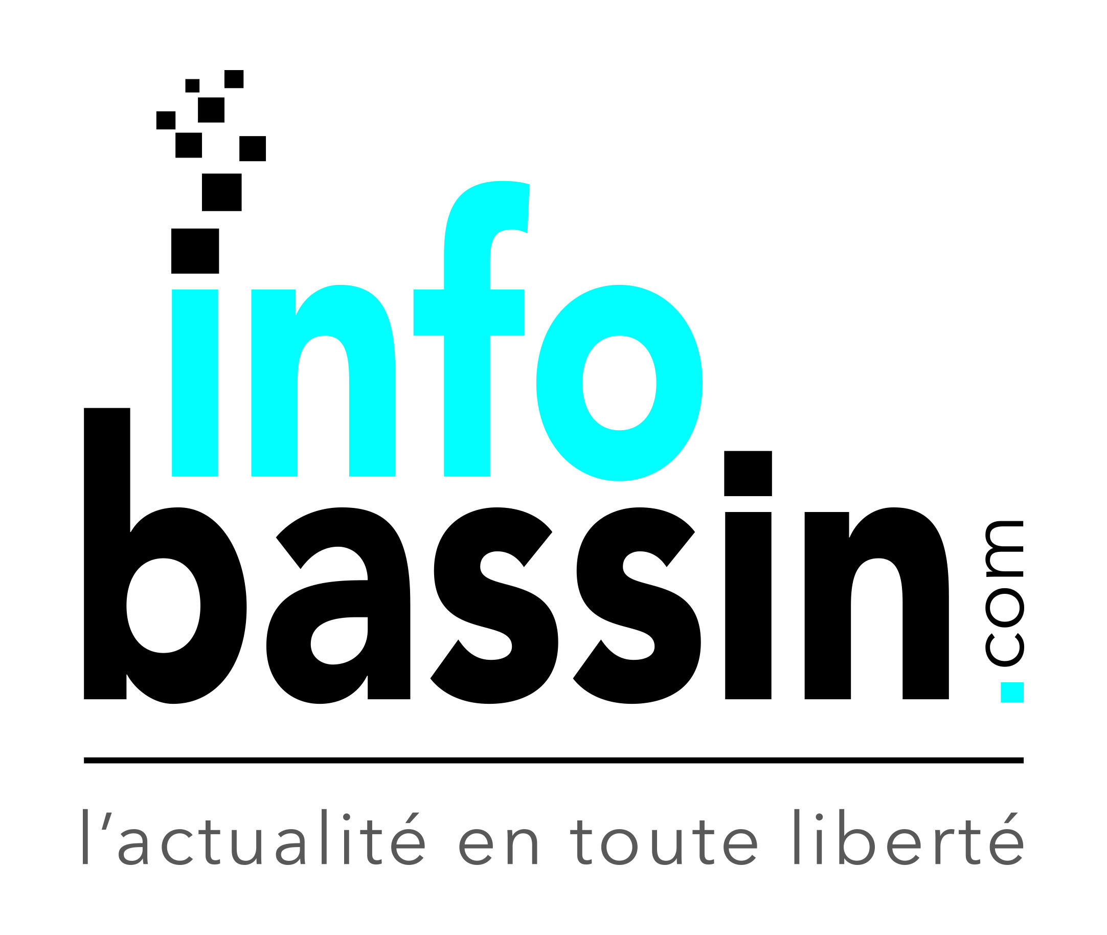 Logo infoBassin.com